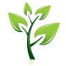 ico_tree